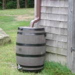 rainwater barrel collecting water from the eavestrough of a house