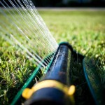 image of a lawn sprinkler running