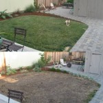 Before and After Results of Aerating A Lawn. An Aerated Lawn Is Lush, Green, and Dense